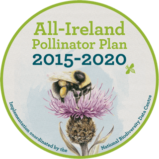 All Ireland Pollinators Plan